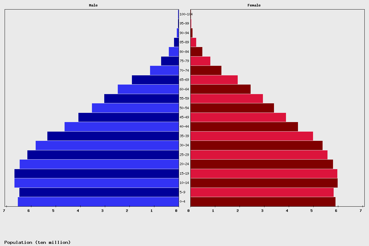 India Age structure and Population pyramid