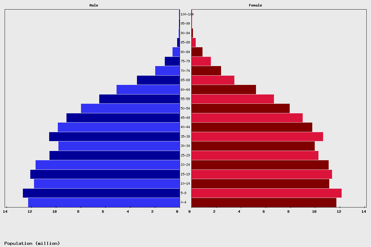 Indonesia Age structure and Population pyramid