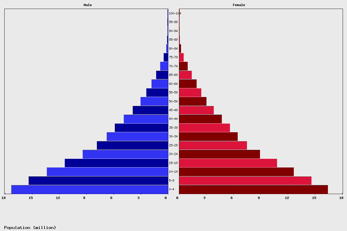 Nigeria Age structure and Population pyramid
