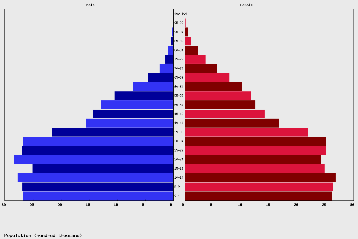 South Africa population Chart age structure